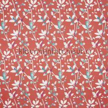 Trebah tigerlilly cortinas Prestigious Textiles todas as imagens