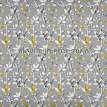 Trebah saffron cortinas Prestigious Textiles todas as imagens