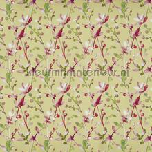 Trebah canary cortinas Prestigious Textiles todas as imagens