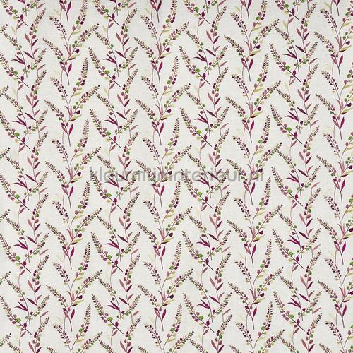 wisley daiquiri cortinas 3738-351 romántico Prestigious Textiles