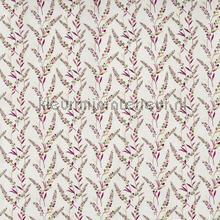 Wisley daiquiri cortinas Prestigious Textiles todas as imagens
