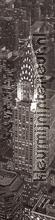 View on New York wallstickers Lande Byer