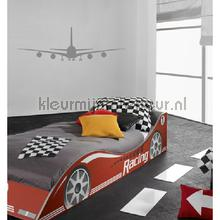 Plane grijs decoration stickers Coart teenager
