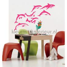 Dolphins roze stickers mureaux Coart Voitures Transport