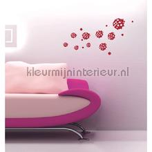 Ladybug decoration stickers Coart Coart Wall Sticker DP-781