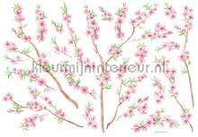 Bloesem-Perzikboom Muursticker decoration stickers Imagicom Crearreda collectie 57101
