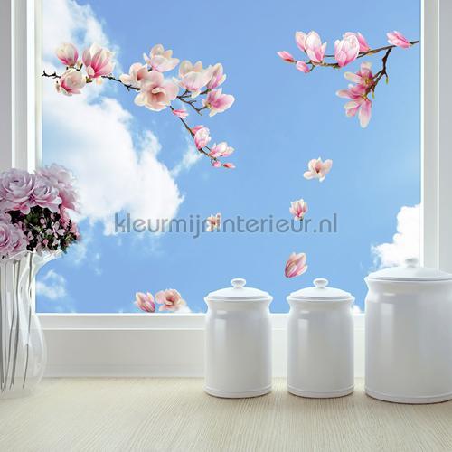 Magnolia Raamsticker decoration stickers 64006 window stickers Crearreda
