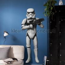 Star wars stormtrooper decoration stickers Komar teenager