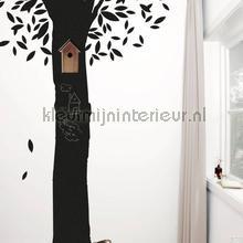Schoolbordsticker chalkboard tree wallstickers ch-30 silhuetter Kek Amsterdam