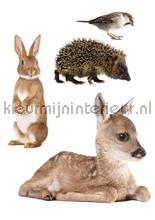 Muursticker set forest friends 2 interieurstickers Kek Amsterdam Baby Peuter