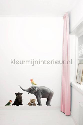 safari friends 3 decorative selbstkleber ms-046 Baby - Kleinkind Kek Amsterdam