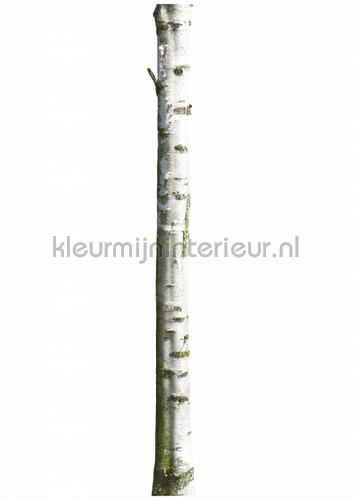 home tree 7 stickers mureaux ms-252 Bébé - Enfant Kek Amsterdam