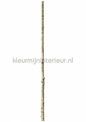 home tree 5 stickers mureaux ms-255 Bébé - Enfant Kek Amsterdam