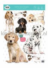 Set puppies interieurstickers Kek Amsterdam Baby Peuter