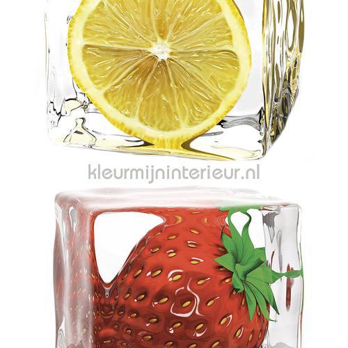 Ijsklontjes met fruit XL sticker wallstickers 300651 abstrakte moderne AS Creation