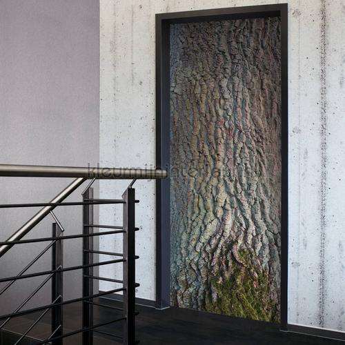 Eiken schorsstructuur sticker wallstickers 020023 door stickers AS Creation
