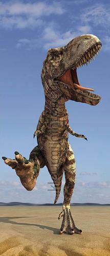t rex wallstickers 473728 dinoos AS Creation