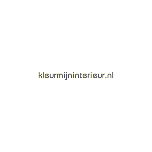 Helicopter interieurstickers LaLien jongens