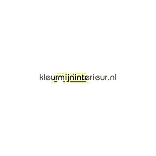 Basketballer decoration stickers LaLien LaLien-collectie