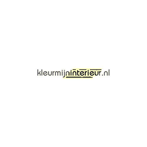 Skater ollie interieurstickers LaLien jongens