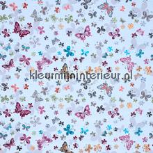 Butterflies cortinas romántico