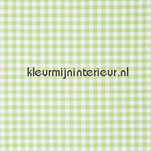Vichy ruit groen 1,5 cm tendaggio Tutti-immagini