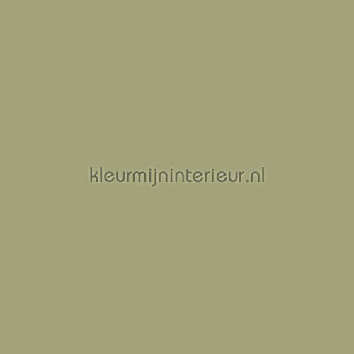 https://www.kleurmijninterieur.com/images/product/kinderstoffen/uni%20verduisterend/vadpp-77_camouflage-gr.jpg