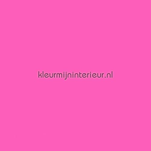 Fuchsia verduisterend gordijnen | kleurmijninterieur.nl