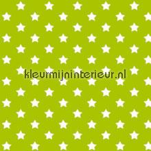Sterren groen plekfollie Gekkofix alle ploatjes