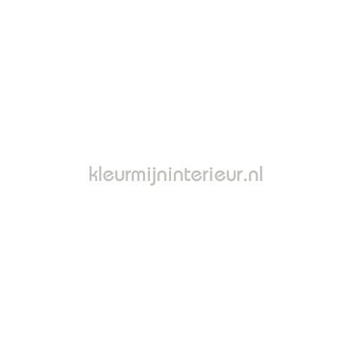 Plakfolie standaard wit Budget pellicole autoadesive 10-1305 sale foils Patifix