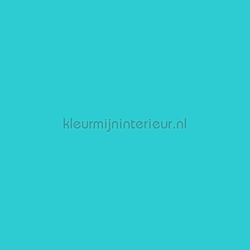 Turquoise blauw plakfolie 10-1265 Patifix collectie