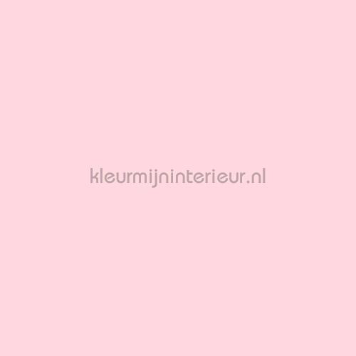 Pastel roze plakfolie 10-1280 uni kleuren dhz Patifix