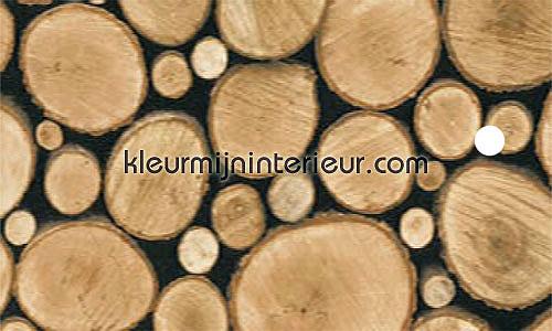 stammen plakfolie 11613 hout Gekkofix