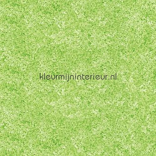 Groen gemeleerd plakfolie 200-2704 DC-fix collectie