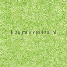 Groen gemeleerd self adhesive foil DC-Fix wood