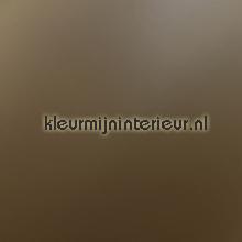 Plakfolie bruin uni lámina adhesiva DC-Fix Plata Metálico