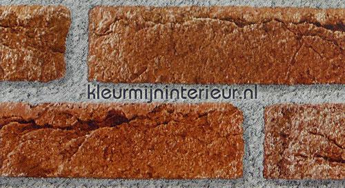 baksteen rood pellicole autoadesive 2002158 Pietra - Calcestruzzo DC-Fix
