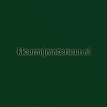 Groen plakfolie DC-Fix uni kleuren dhz