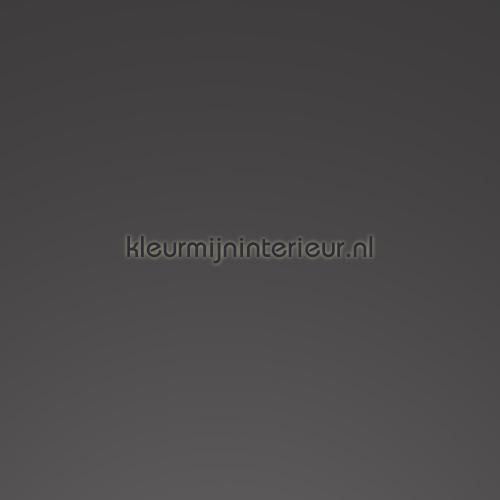 ral 7012 basaltgrijs hoogglans 3112 self adhesive foil
