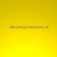 Ral 1018 Light yellow klebefolie Macal uni farben prof