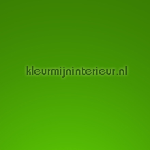 Ral 6018 Sping green feuille autocollante Macal unis