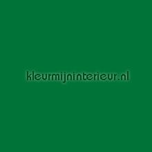 Middengroen zijdeglans pellicole autoadesive Multifix sale foils