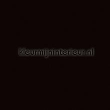 Zwart zijdeglans plakfolie Multifix 3136