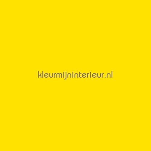 Ral 1016 Lemon Yellow selvklaebende plast 8909-12 61 cm uni plast Macal