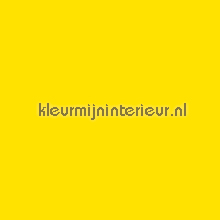 Ral 1016 Lemon Yellow plakfolie Macal alle afbeeldingen