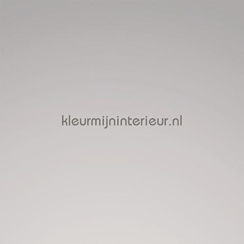 Ral 9007 Silver plakfolie 8969-00 MACal 8900 PRO