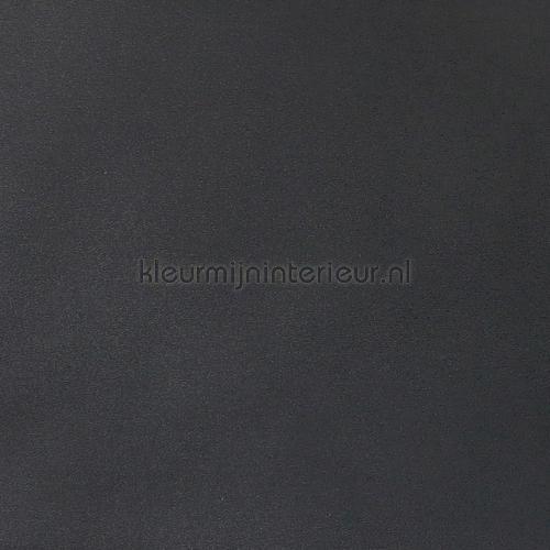 Antraciet nappes moderne Kleurmijninterieur