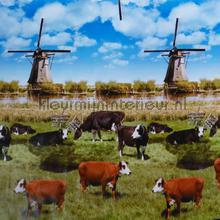 Nederland oilcloth Kleurmijninterieur decors prints