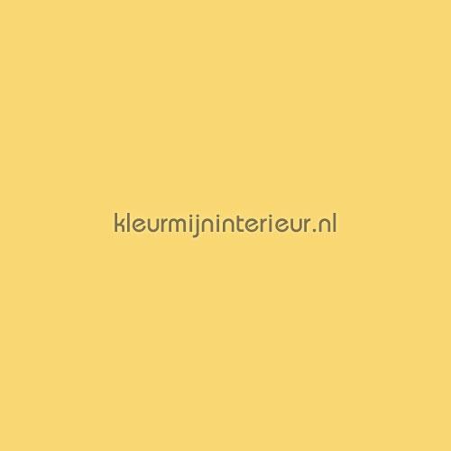 Party tafelkleed geel 110x250 nappes 20018 gelb couleurs unies Kleurmijninterieur