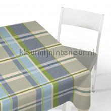 Blauw grijze ruit oilcloth Kleurmijninterieur firkant